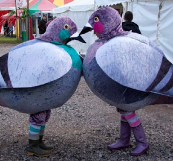 Walkabout Pigeon Characters