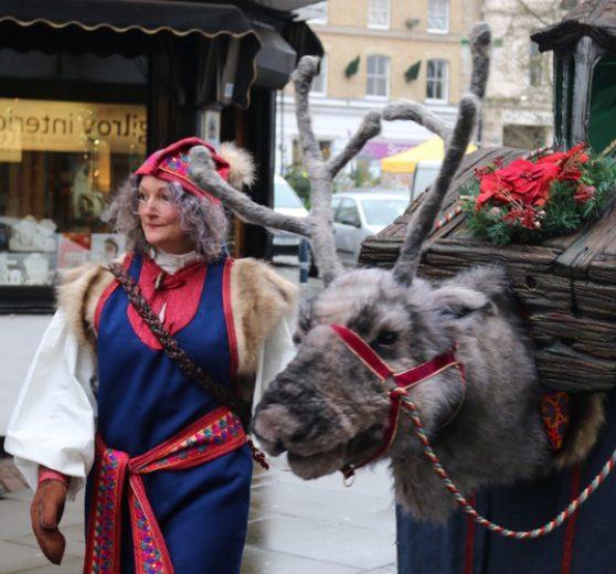 Animatronic Reindeer Walkabout - Christmas animals