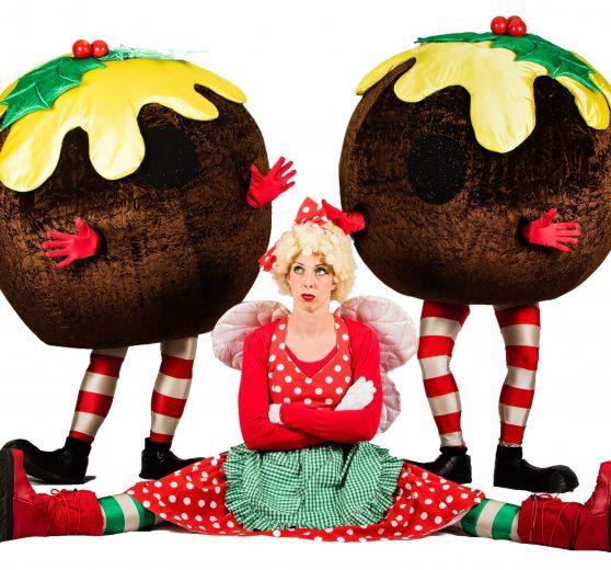 Christmas Puddings and Fairy