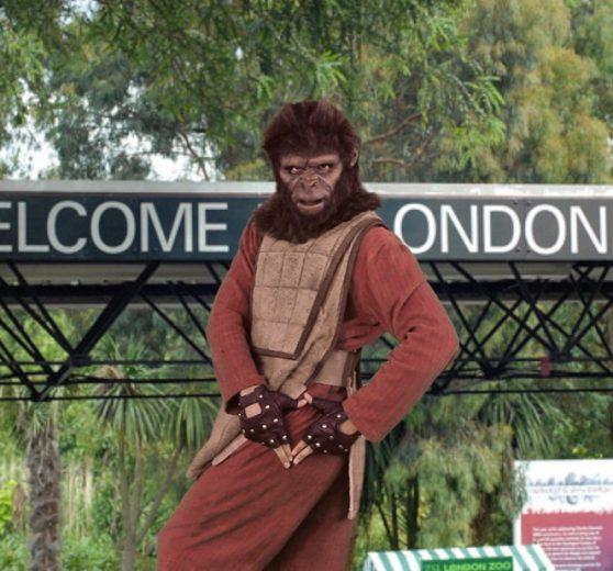 Ape Mime