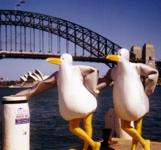 The Giant Seagulls