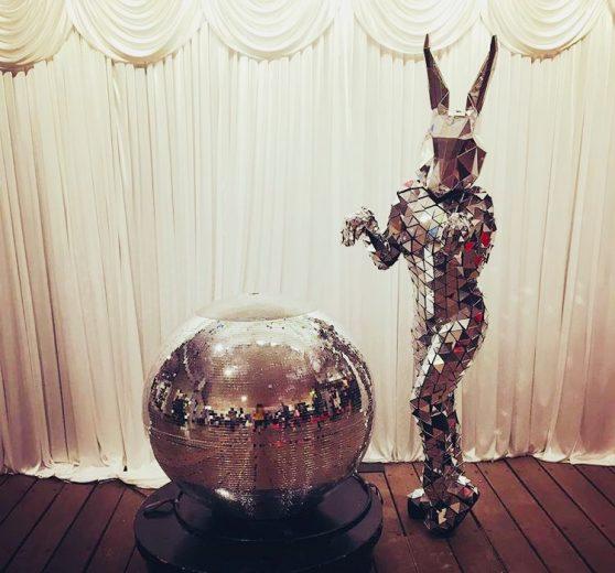 Disco Mirror Bunny