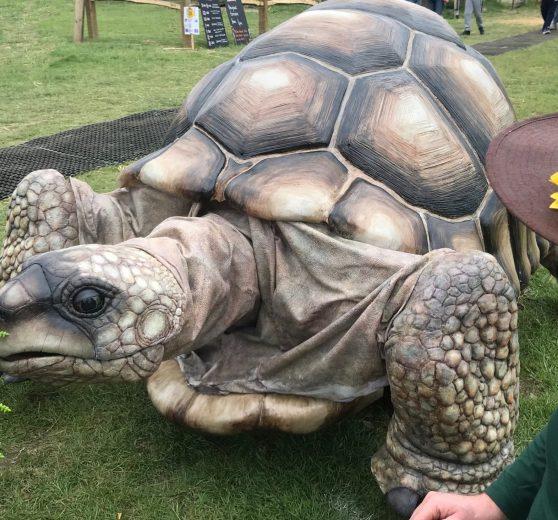 Giant Tortoise Puppet